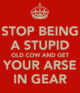 stop-being-a-stupid-old-cow-and-get-your-arse-in-gear
